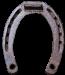 horseshoe-rusted